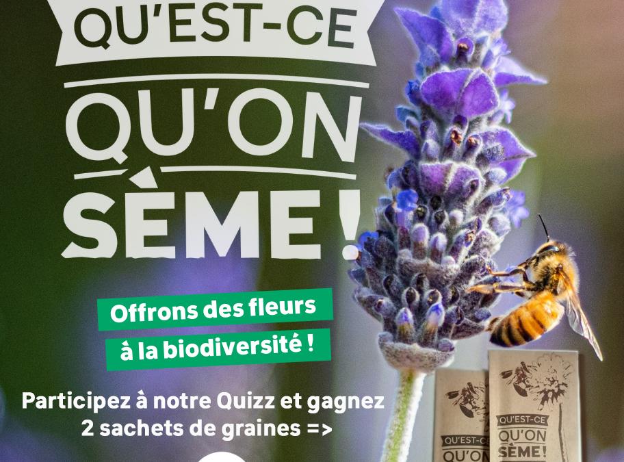 « Qu'est-ce qu'on sème ! » : La biodiversité, c'est notre assurance vie pour demain !